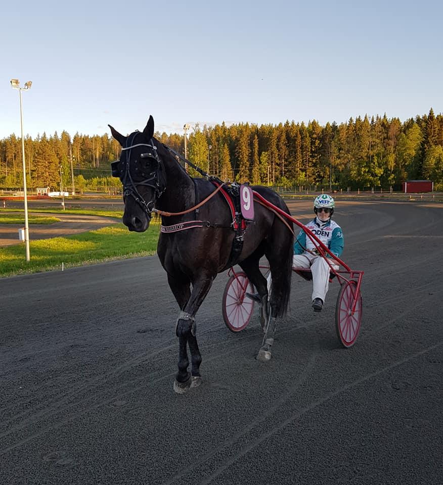 Fina framgångar i Skellefteå