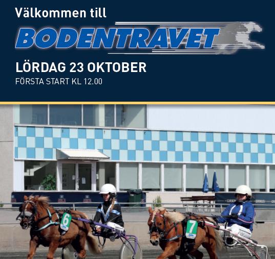 Ponnytrav 23 oktober