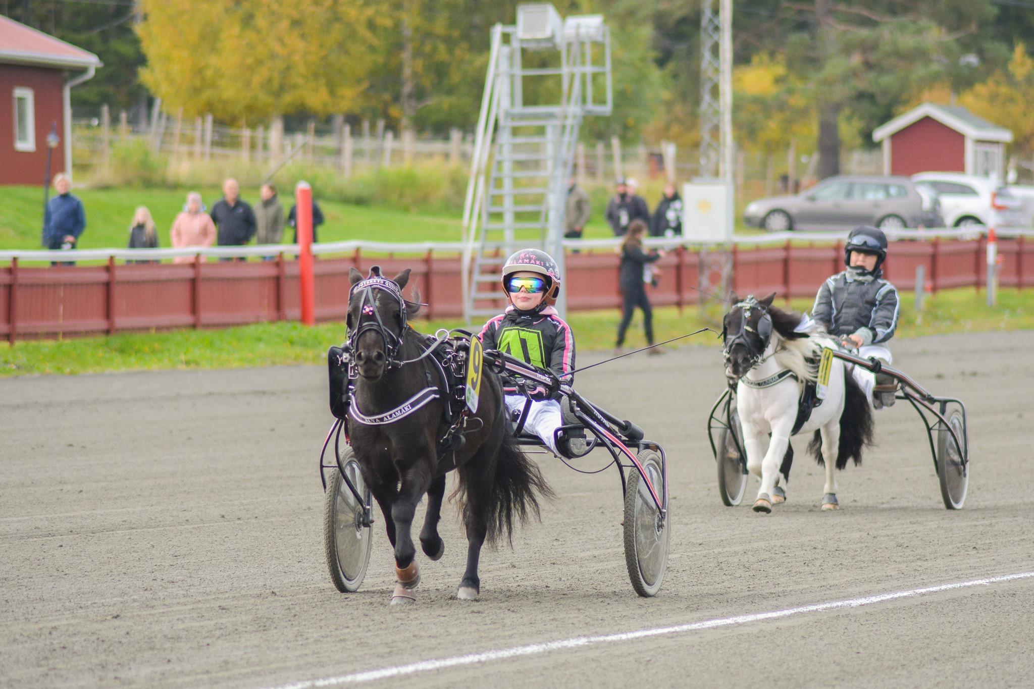 Höstlig tävlingsdag i Skellefteå