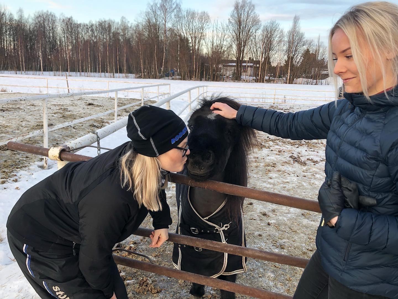 Hästshopen blir nytt utbildningsstall